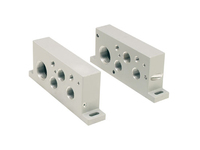 Isys ISO H1 Series End Plate Kits - NPT